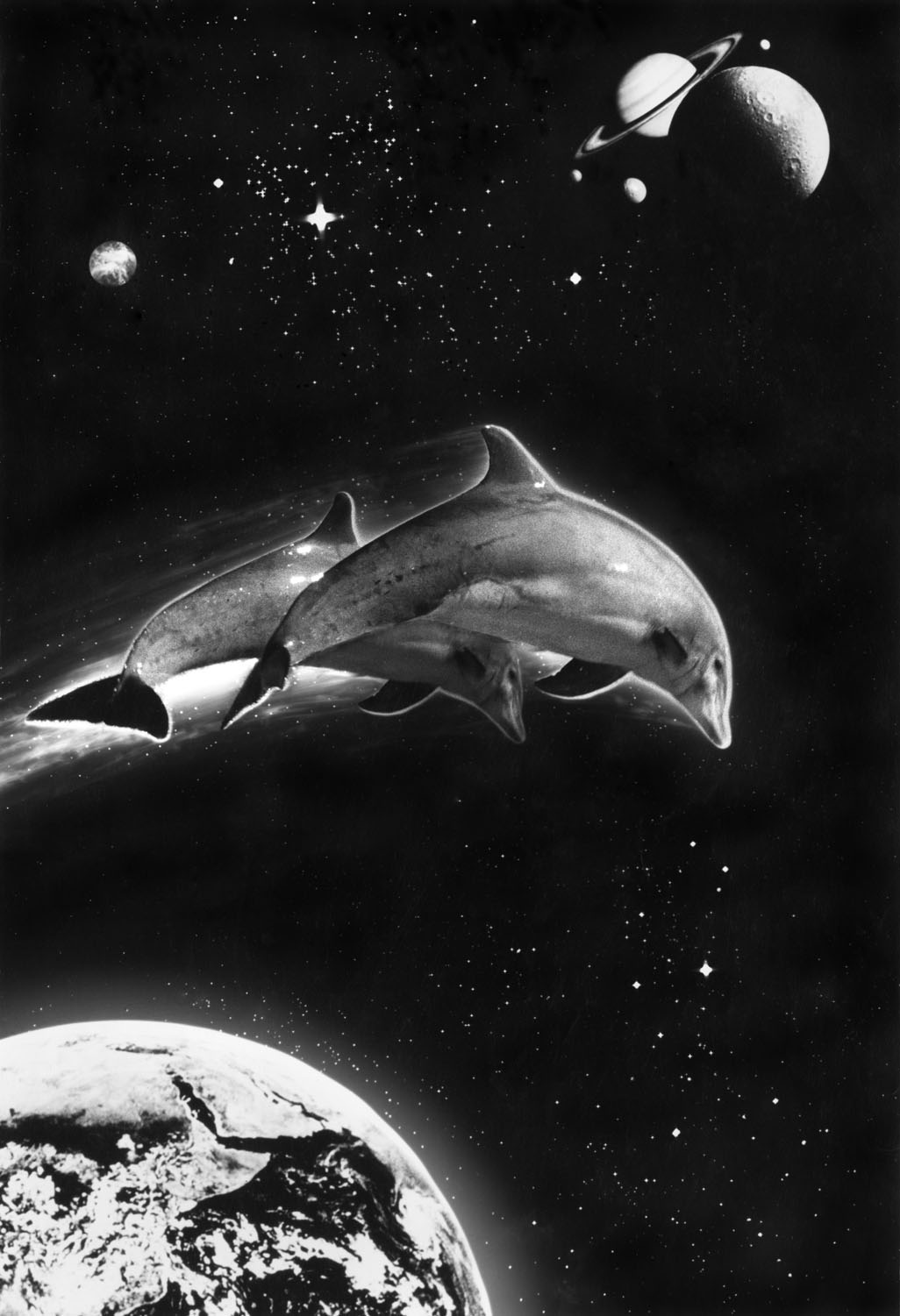 Space Dolphins